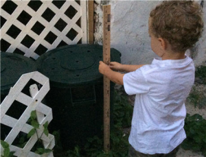 composting with worms 16